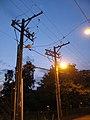 Wires22.jpg