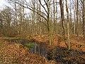 Wolbecker Tiergarten (11).JPG
