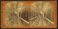 Wooden bridge leading to mill, from Robert N. Dennis collection of stereoscopic views.png