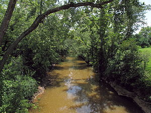 English: Worthington Creek as viewed downstrea...