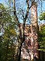 Wzgórze Joanny Nature Reserve wieża 25 X 2008.jpg
