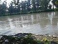 Yamun River Location at Radaur, Yamunanagar.jpg