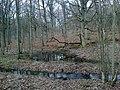Yvelines Poigny-La-Foret Petit Etang Neuf 23022014 - panoramio (1).jpg