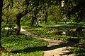 Záhřeb, botanická zahrada, květiny.jpg