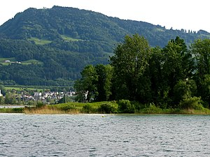 Etzel (mountain) - Etzel as seen from the Lake Zürich, with Ufenau island in the foreground