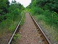 Zazymya railway.JPG