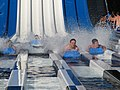 Zipping down with slugs (Calypso Park).jpg