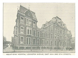 Mount Sinai Hospital (Manhattan) - The hospital in 1893.