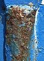 Étrave rouillée du chalutier SCOUBIDOU (2).JPG