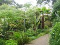 Île de Batz 034 Jardin Georges Delaselle.JPG