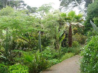 Original file 3 456 2 592 pixels file size mb for Jardin georges delaselle