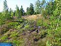 Ādažu novads, Latvia - panoramio (6).jpg