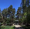 Голосіївський парк ім. М.Рильського IMG 3522 stitch.jpg