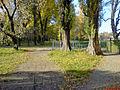 Городской сад в Кременчуге (4).jpg