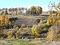 Долина р. Миасс (дер. Прохорово) - panoramio (56).jpg