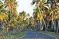 Доминиканская Республика - panoramio (57).jpg