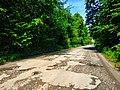 Дорога в с. Осташки, фото 3.jpg
