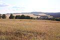 Козьи горы - panoramio (4).jpg
