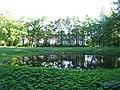 Лесная оранжерея за Оранжерейным прудом, 2011.JPG