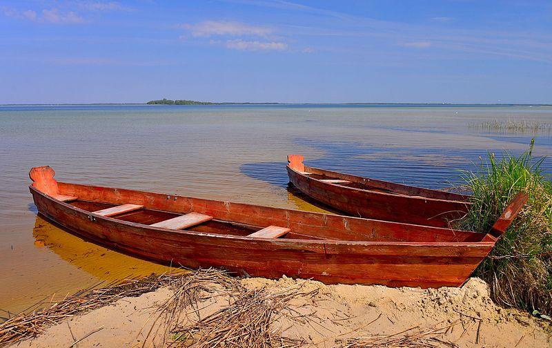File:На березі Світязя.jpg