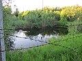 Огороженный водоем - panoramio (2).jpg