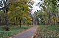 Парк, де похований Крістер з синами.jpg