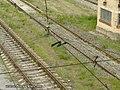 Станція Петрівка - panoramio (7).jpg
