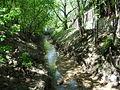 Ходынка-река.JPG