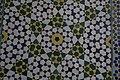 مسجد وکیل -شیراز ایران- 38- Vakil Mosque in shiraz-iran.jpg