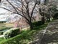 グランデュール鴨川前 - panoramio (1).jpg
