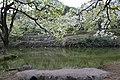 大荆白箬岙风光 - panoramio (8).jpg