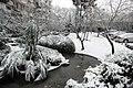 小區雪景 - panoramio.jpg
