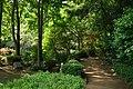 東高根森林公園 - panoramio (23).jpg