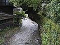 楠と清流 - panoramio.jpg