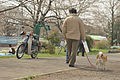 犬のお散歩 (3410949494).jpg