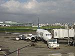 羽田空港に駐機中のスカイマーク.JPG