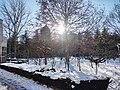 雪后的潍坊学院 2020-12-30 14.jpg