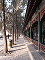 颐和园 - panoramio (1).jpg