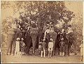 -Four Elephants with Western Travellers and Attendants, Jaipur, India- MET DP71256.jpg