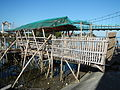 09983jfFields Wawa Bridges Beaches Orion Bataanfvf 02.JPG