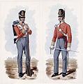 100th Regiment of Foot c1812-1814.jpg