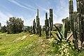 15-07-13-Teotihuacan-RalfR-WMA 0277.jpg