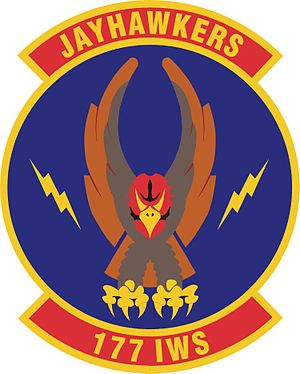 177th Information Warfare Aggressor Squadron - Image: 177th Information Warfare Aggressor Squadron emblem