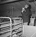 1969 reportage ORTF à La Minière-9-cliche Jean Joseph Weber.jpg