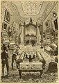 20000 Nautilus Salon.jpg