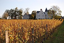 2008-10 Vendanges Chateau La-Roche.jpg