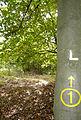 200910071151MEZ Limeswanderweg Wp 10-12 - Wp 10-13 11.jpg