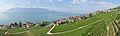 2012-08-12 10-09-50 Switzerland Canton de Vaud Rivaz 4h.JPG