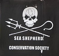 2013 Armada Rouen Sea Shepherd Conservation Society-2.JPG