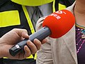 2013 Dafeng News microphone.jpg